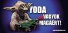 yoda001